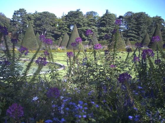 En parcourant le Parc de Sceaux, j'ai admiré ses parterres de fleurs